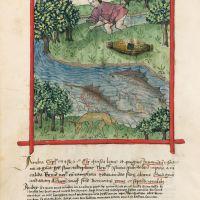 <p>f. 82v, Ambergris</p>