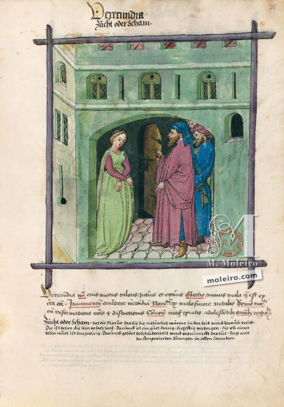 Tacuinum Sanitatis f. 95r, Shame