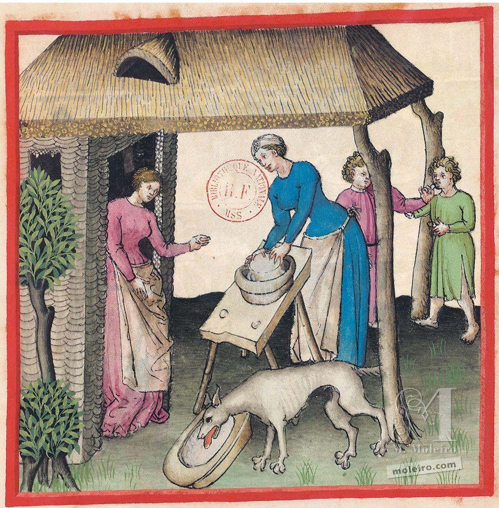 f. 58r, Queso fresco en el Tacuinum Sanitatis - Ms. Lat 9333  (XV, Renania) Bibliothèque nationale de France, París tratado medicina edad media