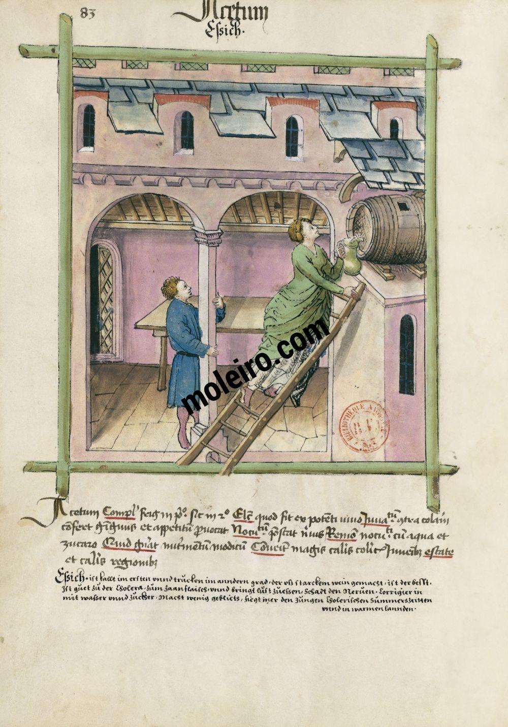 Tacuinum Sanitatis f. 83v, Essig