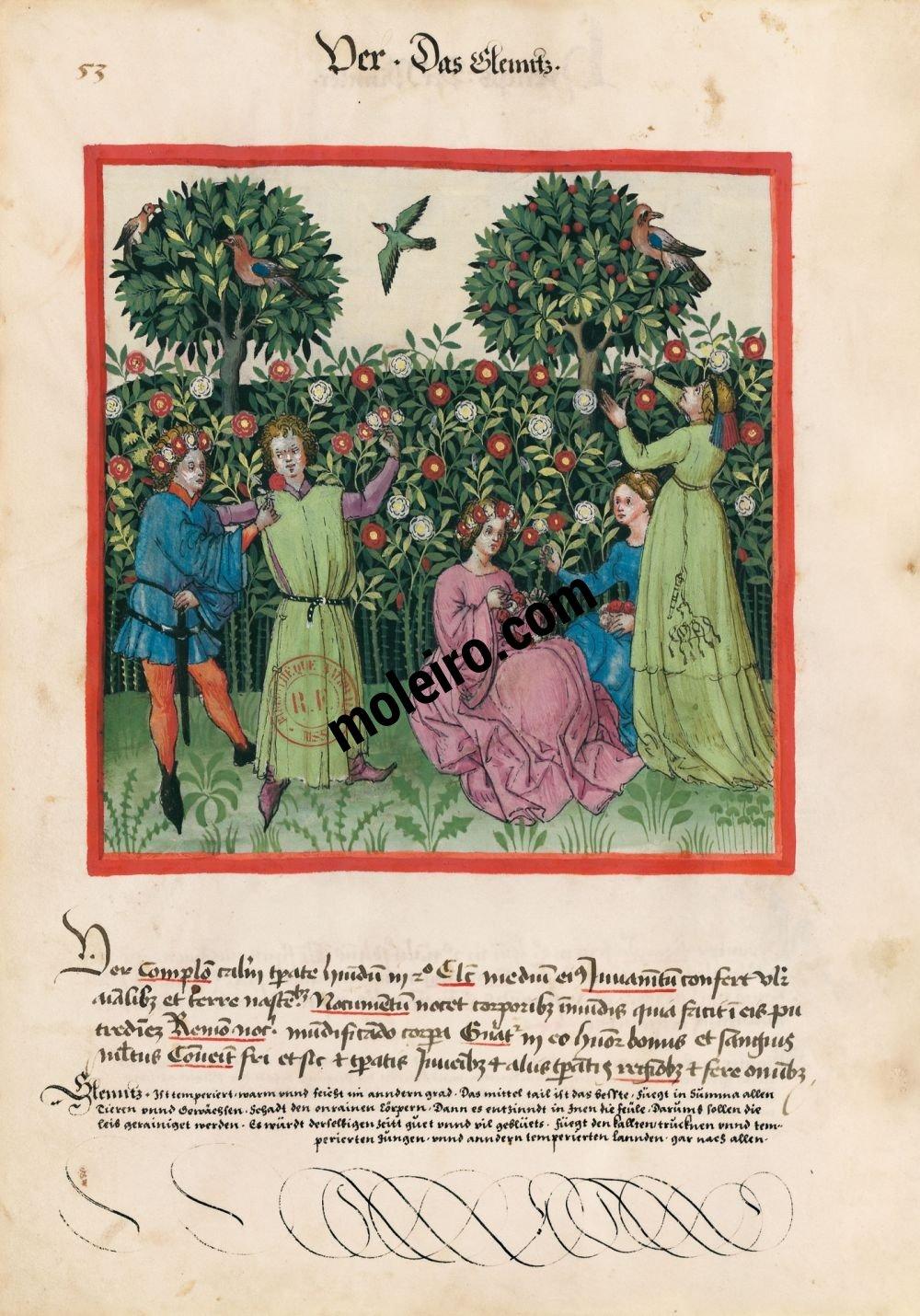 Tacuinum Sanitatis f. 53v, Spring