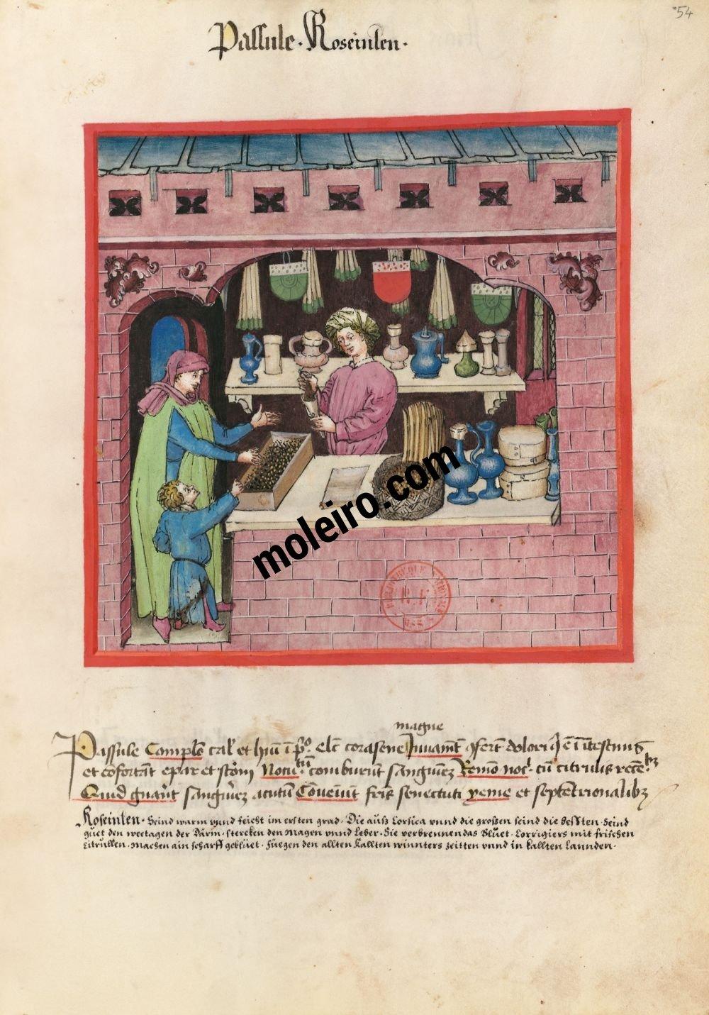 f. 54r, Pasas en el Tacuinum Sanitatis - Ms. Lat 9333  (XV, Renania) Bibliothèque nationale de France, París tratado medicina edad media
