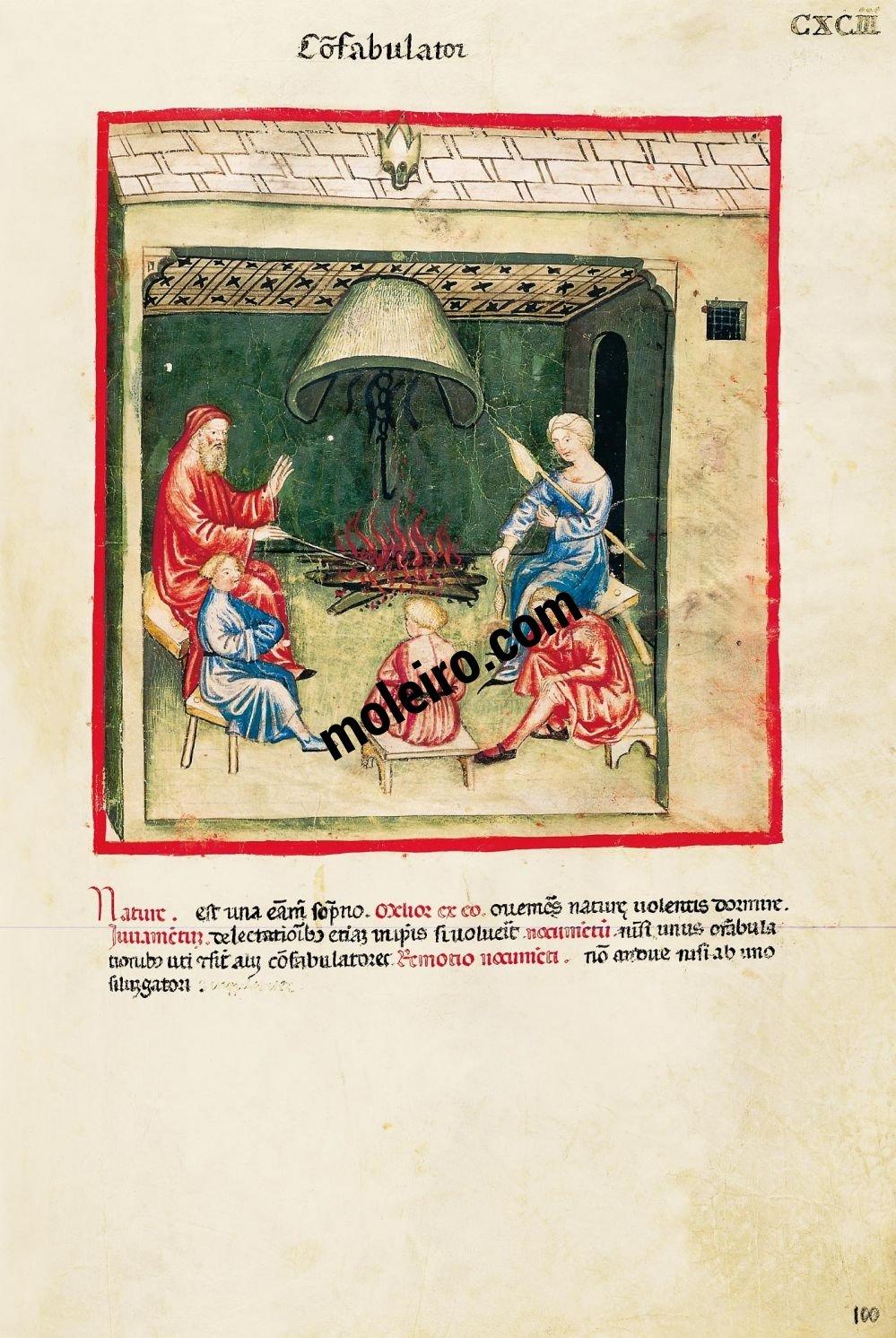 Theatrum Sanitatis f. CXCIII, Story teller