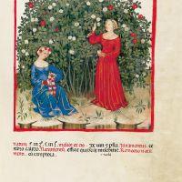 f. LXIX, Roses