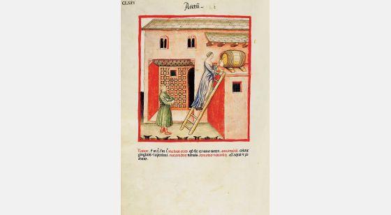 Theatrum Sanitatis Vinagre