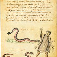 folio 6r
