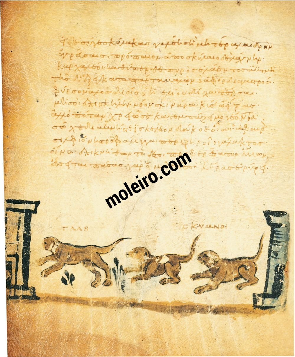 Theriaka and Alexipharmaka by Nicander folio 21v