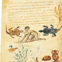 folio 45r
