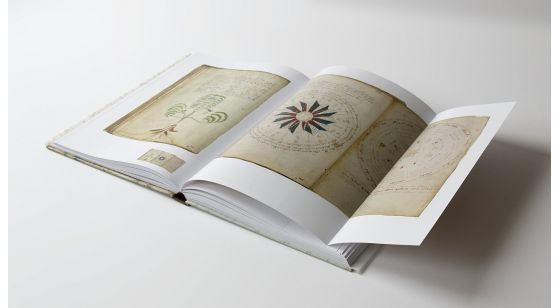 The Voynich Manuscript Inside gatefolds of The Voynich Manucript