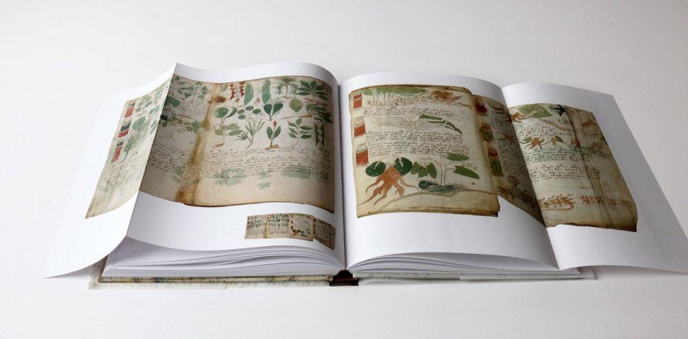 The Voynich Manuscript Inside gatefoldsof The Voynich Manuscript