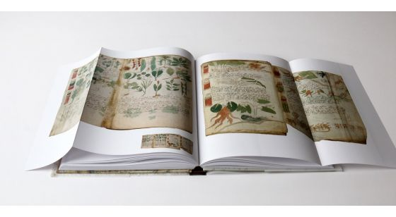 The Voynich Manuscript Inside gatefolds of The Voynich Manuscript