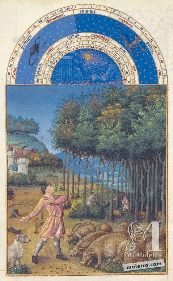 AsTrès Riches Heures do Duque de Berry f. 11v